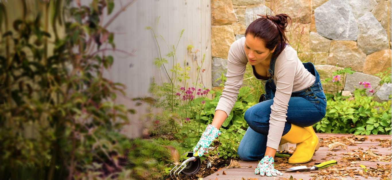 garden-care-services